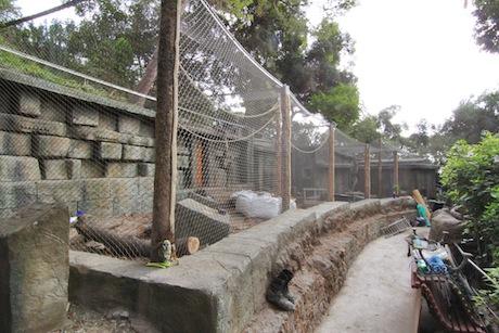 Monkey temple progress 2
