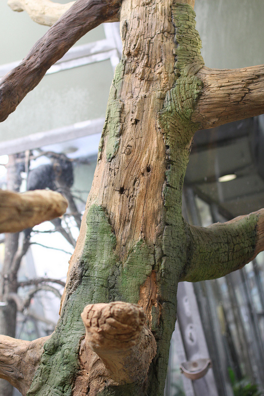 artificial tree in zoo enclosure