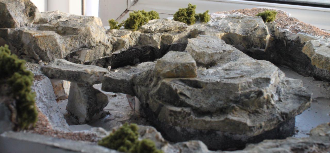humboldt-penguin-habitat4