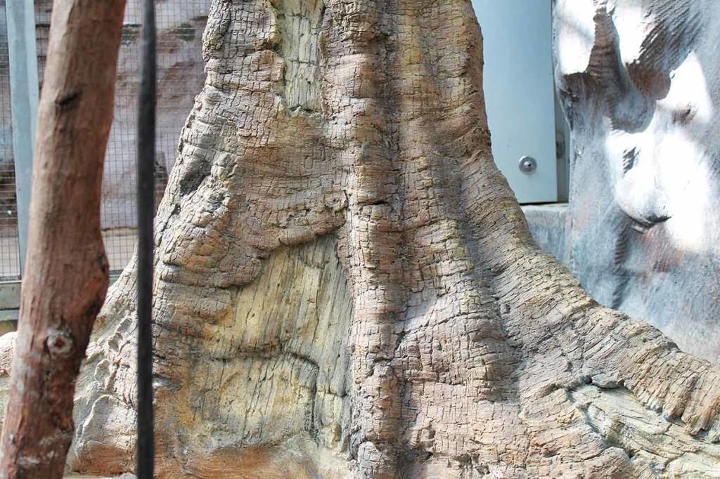Artificial tree in sloth enclosure