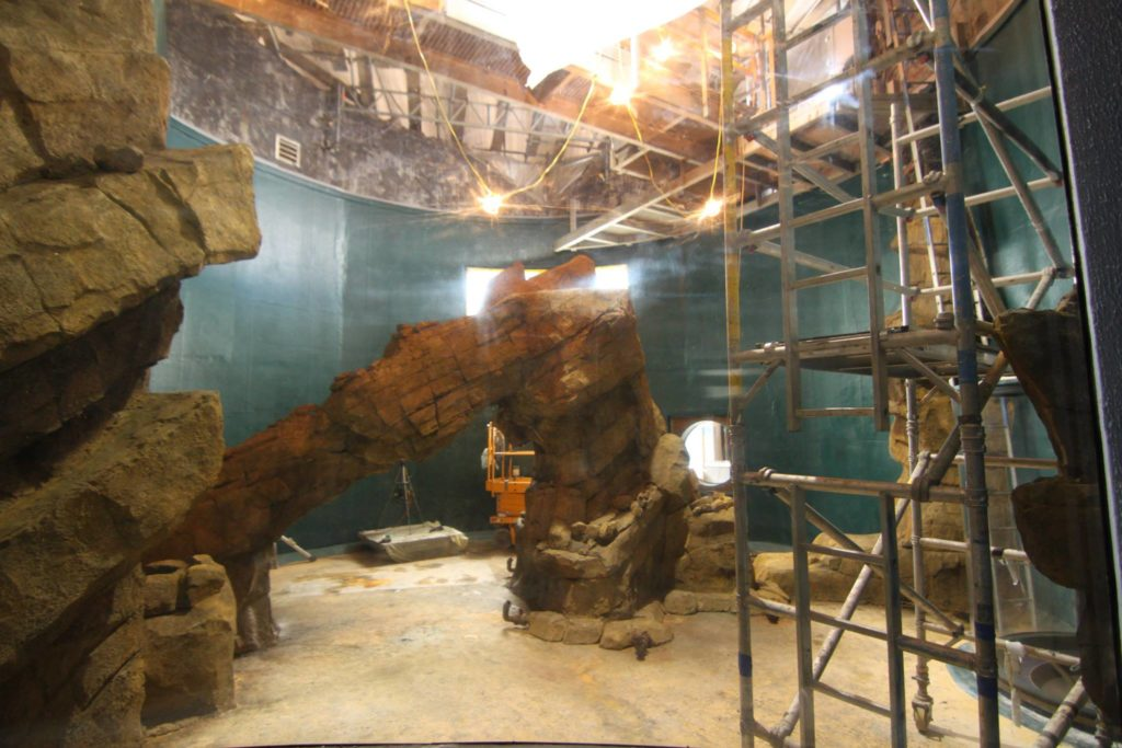kelp-aquarium-rock-arch