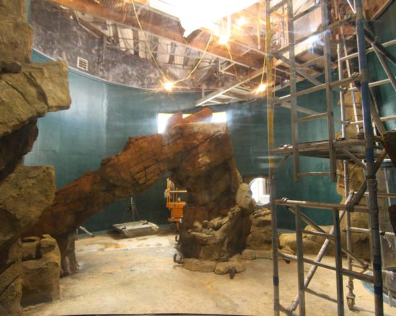 Rockwork for Kelp Aquarium